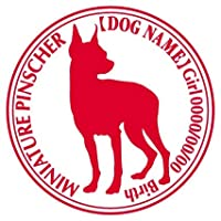 ミニチュアピンシャー ステッカー Cパターン グッズ 名前 シール デカール ミニピン カー 犬 いぬ イヌ シルエット (リーズナブルレッド)