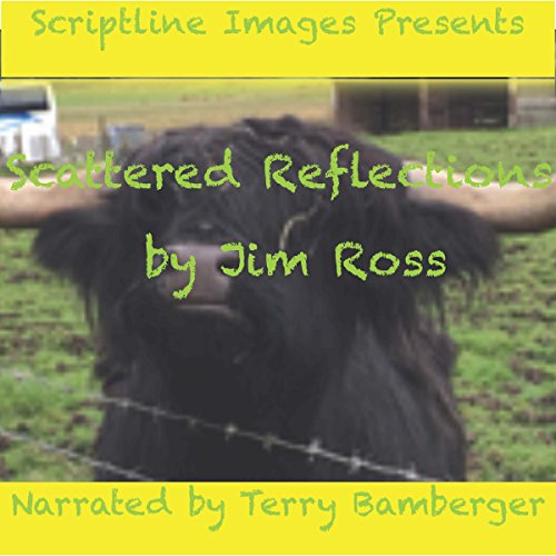 Scattered Reflections audiobook cover art