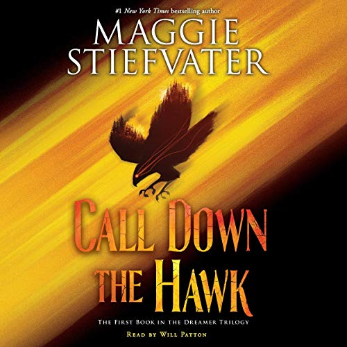 Call Down the Hawk cover art