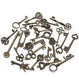 inherited 24 piezas Dijes esqueleto llave rústica, de bronce antiguo esqueleto clave vintage DIY...