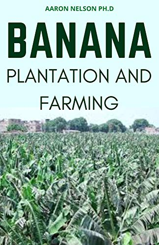 BANANA PLANTATION AND FARMING: BEGINNERS GUIDE TO KNOW THE AGRICULTURAL BASICS AND BENEFITS ON BANANA PLANTATION (English Edition)