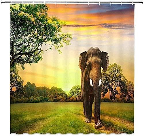 Cortina de Ducha Cortina de Elefante Africano Árbol Verde Prado Vida Silvestre Fantasía Puesta de Sol Diseño de Paisaje Natural Cortina Tejido de Agua de poliéster 72 x 72 Pulgadas