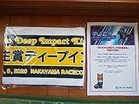 JRA弥生賞ディープインパクト記念マフラータオル