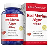 Red Marine Algae 450mg Vegan No Stearates No Additives Red Algae Capsules – Pure Non-GMO Gluten Free Natural Algae Supplements 90 Day Supply by BoostCeuticals