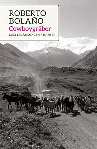 Cowboygräber: Drei Erzählungen