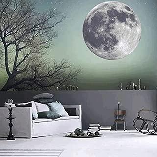 CaseFan 50cm Glow in Dark Full Moon Light Luminous Wall Stickers Vinyl Removable Art Mural Wallpaper DIY Decals(19.7x19.7 Inches) for Kid Baby Nursery ,Gray