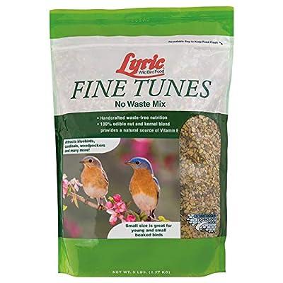 Lyric Fine Tunes No Waste Bird Seed Mix