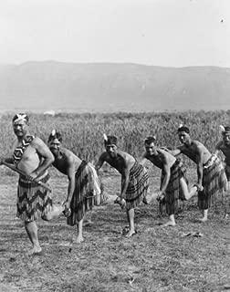 1800s photo Five Maori men posing in traditional clothing doing haka dance (w a6