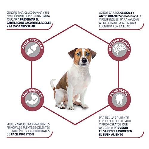 ADVANCE Senior Mini - Pienso Para Perros Senior De Razas Pequeñas Con Pollo - 3 kg