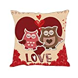 Hexagram Valentines Day Pillows Gifts for Him/Her Owl Love Heart Throw Pillow Covers Cushion Cases Holiday Decorations Pillowcases for Home Couch,18'x18'
