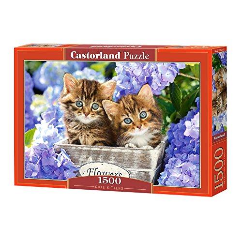 Castor Pays c 151561–2Cute Kittens, Puzzle 1500pièces