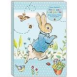 Robert Frederick Peter Rabbit - Juego de notas adhesivas