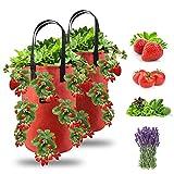 Ulikey Erdbeere Pflanzsack, Pflanzen Tasche Grow Tasche Pflanzbeutel mit Griffe, Hängend Erdbeeren Pflanztaschen mit 13 Löchern für Pflanzen/Kräuter/Blumen, 2 Pack 3 Gallon (2er-Pack Rot)