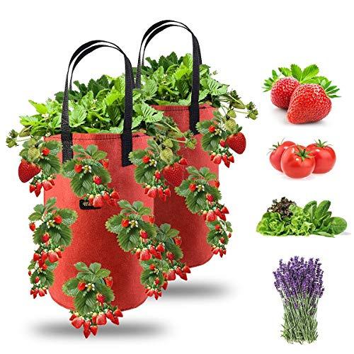 Ulikey 2Pcs Bolsas de Cultivo de Fresa, 3 Gallones Bolsa para Plantas Fresas Bolsa de Macetas Colgantes con Asas No Tejidos Transpirables con 13 Agujeros para Papas, Tomates y Fresas (2pcs - Rojo)