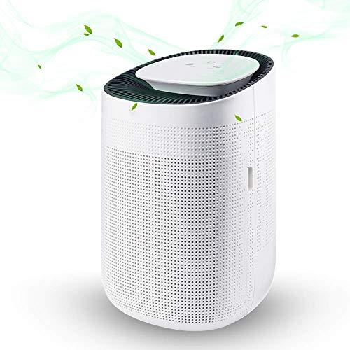 XYSQWZ Deshumidificador de Alta eficiencia Súper silencioso 1000ml Purificador de Aire de Alta Capacidad Deshumidificación de Humedad para el hogar