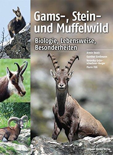 Gams-, Stein- und Muffelwild: Biologie, Lebensweise, Besonderheiten