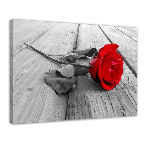 Bilderdepot24 Bild auf Leinwand | Rose Steg in 70x50 cm als Wandbild | Wand-deko Dekoration Wohnung modern Bilder | 16098
