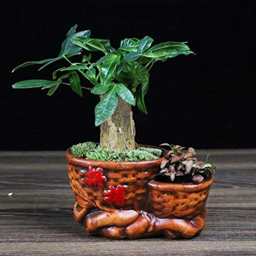 Récipients pour plantes de jardin Bureau Rich Petit arbre Bonsai Décoration Maison Salon Bureau Chambre Céramique Pot de fleurs Succulent Petite plante verte Bonsai Pots de fleurs