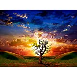 NIMCG Red Sunset Landscape Painting Modern Home Decoration Painting Beautiful Landscape Living Room Decoration (Sin Marco) 60x90CM