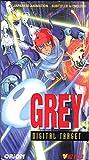 Grey Digital Target [VHS]