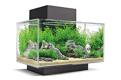Fluval Edge 2.0 - Aquarium Set mit LED- Beleuchtungssystem