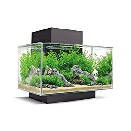 Fluval Edge Aquarium Set mit LED-Beleuchtungssystem
