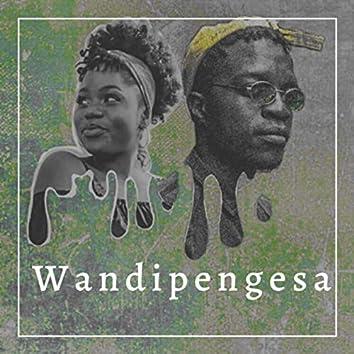Wandipengesa