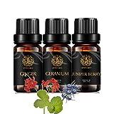 Aromaterapia Geranio Aceite Esencial Set para difusor, 3x10ml 100% puro jengibre aceite esencial Kit para Humidifier- jengibre, geranio, enebro Berry Aceites Esenciales, baya de enebro Aceites Kit