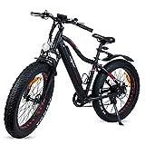 Ecoxtrem - Bicicleta eléctrica, Fat Bike, 250W, batería 48V, Ruedas Kenda 26', Pantalla LCD, Palanca de velocidades, Color Negro Mate