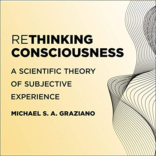 Rethinking Consciousness cover art