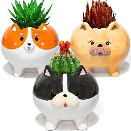 10. Set of 3 Puppy Plant Pots