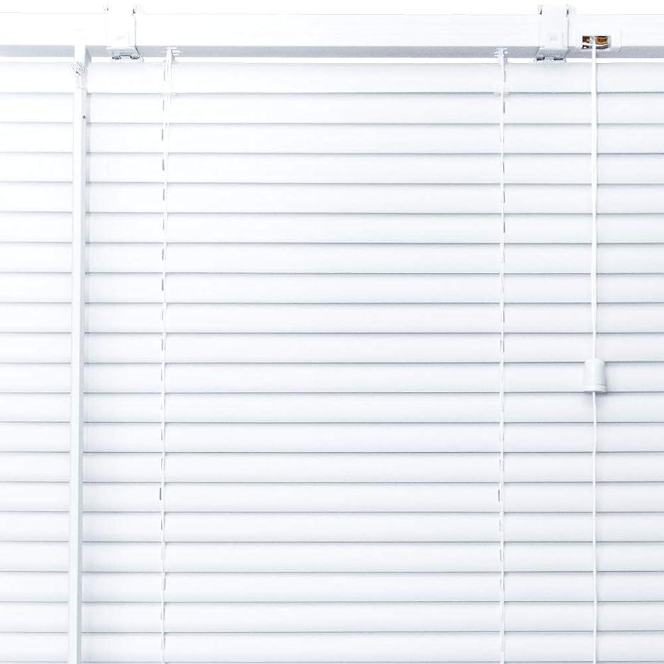 性別満足させる動かすプラスチック ブラインド 【幅166cm×高さ176cm】 ホワイト/幅161~180cm×高さ152~200cm から選べる
