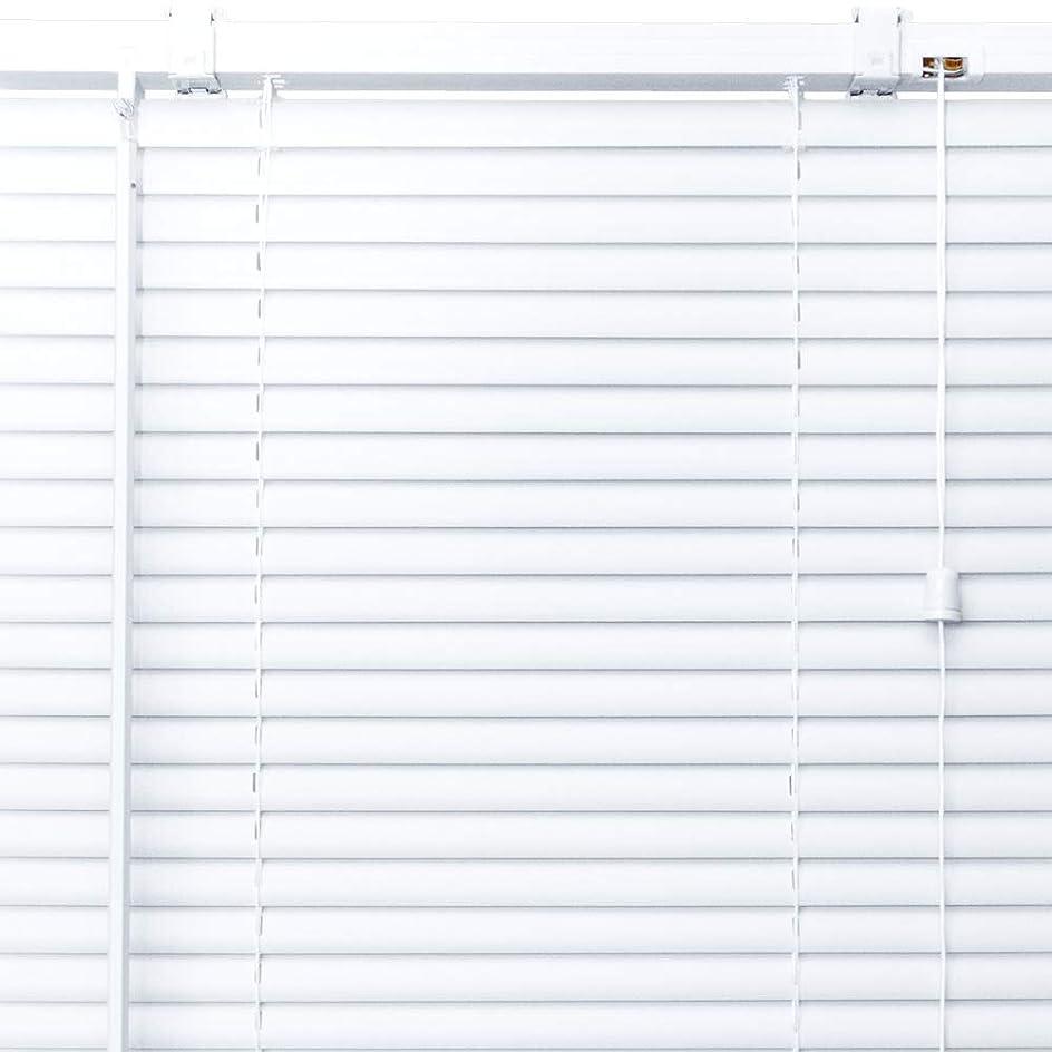 スラッシュミスペンド一般プラスチック ブラインド 【幅99cm×高さ82cm】 ホワイト/幅81~100cm×高さ30~100cm から選べる