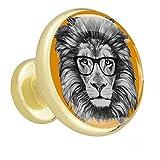 Perillas de mesillas de noche León con gafas Perillas de los cajones del tocador Perillas de baño hippie para bebé, paquete de 4 1.26x1.18x0.66in