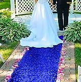 ShinyBeauty AisleRunnersforWeddingsOutdoor 4FTx20FT BlueAisleRunner Rug WeddingAisleRunner Beach AisleRunnerforWeddingCeremony Carpet Runner for Party (4FTx20FT, Royal Blue)