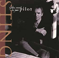 Sting: Let Your Sould Be Your Pilot