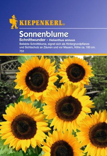 Sperli Blumensamen Sonnenblume Schnittwunder, grün