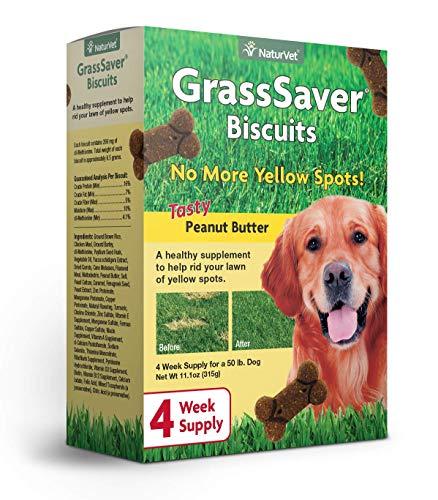 10 best dog treats yard savers for 2020