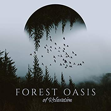 Forest Oasis of Relaxation: 15 Calm New Age Songs, Stress Relief, Calm Down, Forest, Birds, Water, Rest, Piano Melodies