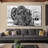 Modernos carteles y grabados en blanco y negro arte mural lienzo pintura decoración mural leopardo sala de estar pintura sin marco30x45cm