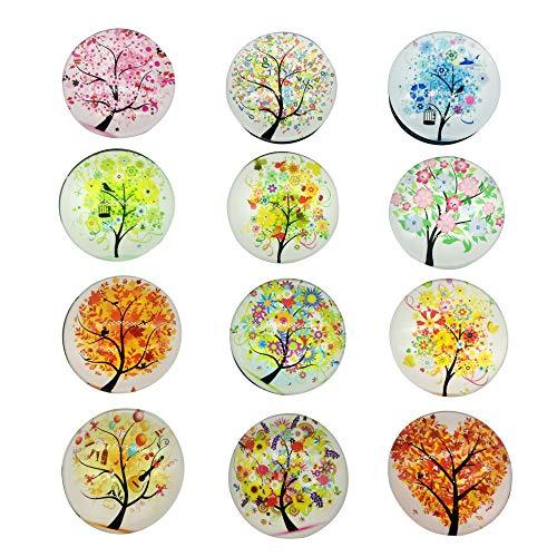 Ealicere 12 Stücke Kühlschrankmagnete aus Glas 3D Magnete für Kühlschrank, Magnettafel oder Whiteboards, Büro Schränke, Glänzende Beschichtung