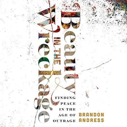 Beauty in the Wreckage audiobook cover art