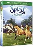 Spirit, au Galop en Toute liberté-Saisons 5 et 6