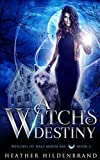 A Witch's Destiny (Witches of Half Moon Bay)