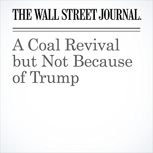 A Coal Revival but Not Because of Trump audiobook cover art