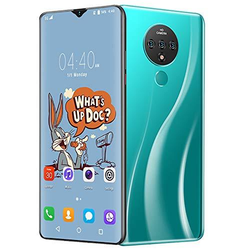 L&F Teléfono Móvil Libre 2020, Pantalla HD+6.7 Pulgadas,4GB+64GB, Smartphone Libres, Batería 4000 mAh,Android 9.1,Dual 4G Soporte de Desbloqueo Facial de Huellas Dactilares,C