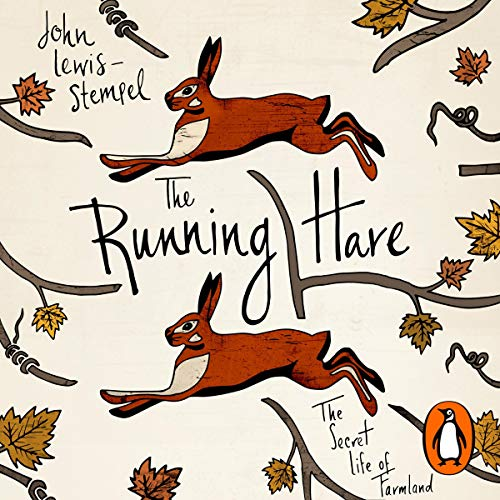 The Running Hare cover art