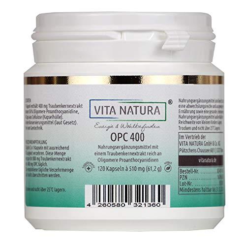 VITA NATURA OPC Traubenextrakt Kapseln - Vegikapseln - 400 mg - aus Frankreich - Laktosefrei - 120 Kapseln in einer Packung enthalten