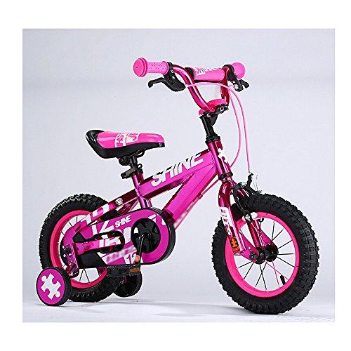 ZHIRONG Bicyclette Pour Enfants Bicyclette De Garçon Et Fille Avec Roue D'entraînement 12 Pouces, 14 Pouces, 16 Pouces, 18 Pouces Sortie Extérieure ( Couleur : Rose , taille : 18 inch )