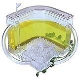 Ant Habitat W/LED Light, Great Educational & Science Kit with Nutrient Blue Gel, 3D Ant Farm Educational Feeding System Ants Habitat World Pet Villa,Yellow,Nature